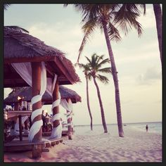 Aruba. I need you.