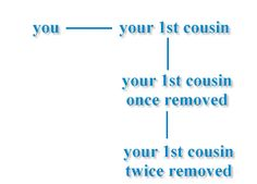 I think I finally understand the 1st/2nd/3rd cousin once/twice/thrice removed!