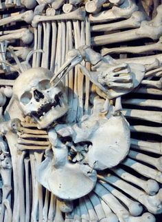 Bone Church, Czech Republlic