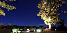 Moon hiding behind gum trees at Vintners Retreat