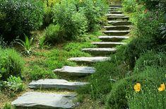 Some hillside landscaping tips - Gardening Site Landscape Steps, Landscape Design, Garden Design, Hillside Landscaping, Landscaping Tips, Farmhouse Landscaping, Meadow Garden, Dream Garden, Outdoor Steps