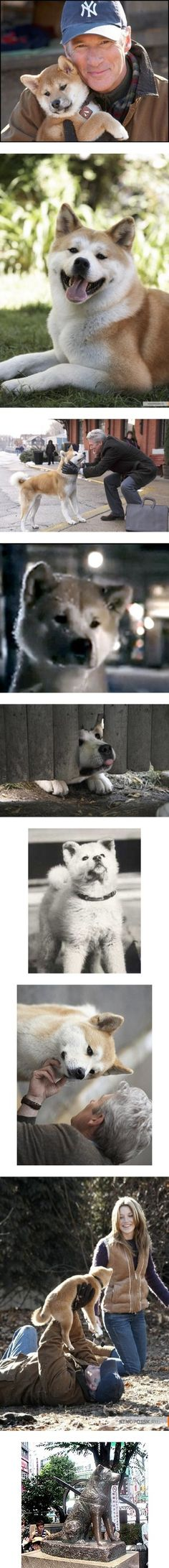 """""""Hachiko"""" by modelely ❤ liked on Polyvore"""