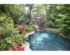 Love the natural looking pool. Great idea, trim back the greens just a bit and it's a keeper.