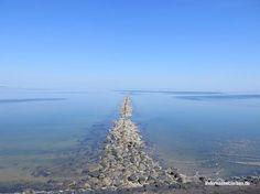 Pellworm ist der meist unterschätzte Ort Schleswig-Holsteins (wenn nicht der Welt) zumindest aber der Nordfriesischen Inseln. Wenigstens in meiner Wahrnehmung ist es so: Alle waren schon mal auf Sylt. Wer noch nicht auf Amrum war, will irgendwann hin. Und Föhr holt seit einigen Jahren gewaltig auf. Aber Pellworm? Pellworm vergisst man ja schon beim Aufzählen der Nordfriesischen Inseln. Ach ja, und Pellworm, schiebt man dann nach. Geschweige denn, dass man je auf der Insel gewesen wäre. D...