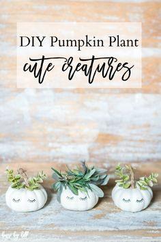 DIY Pumpkin Plant Cu