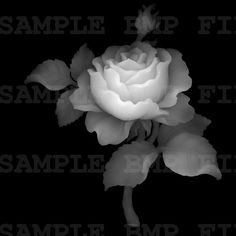 Frame 3d model for cnc in BMP file format Picture Rose_1