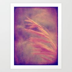 Grass Seed in Autumn Art Print by Cassie Peters - $14.00