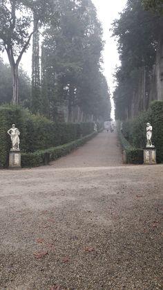 Long vista, Boboli Gardens in winter, Firenze, Italy