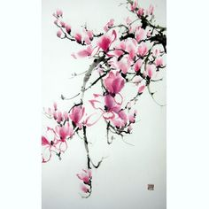 Japanese Ink Painting, Japanese art,  Sumi-e, Suibokuga, Asian art,Rice Paper painting,Large 15x28', Pink Magnolia