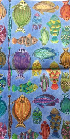 PencilsKM Squirrels Millie Marotta Animal Kingdom Coloring Book