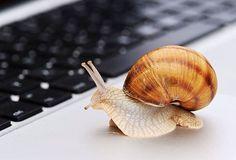 5 reasons why your computer is slow. Read the article on Nout.am/cloud. 5 պատճառթե ինչու է Ձեր համակարգիչը դանդաղ Կարդացեք հոդվածը Nout.am/cloud-ում #tech#technews#noutam#technology#socialmedia#gadgets#data#cloud#news#web#it#pc#social#smarthphone#networking#mobile#computer#security#Microsoft#iphone#ipad#apple#app#html#php#javascript#android#trends#tipsandtricks