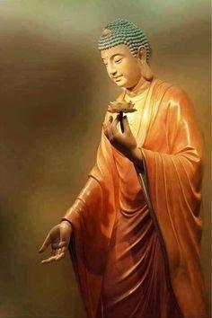 Buddha Amitabha holding a flower Lotus Buddha, Buddha Zen, Buddha Buddhism, Buddhist Art, Amitabha Buddha, Religion, Buddha Temple, Little Buddha, Psychedelic Art