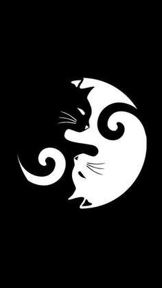 Tattoo animal mandala yin yang 55 new Ideas Black Cat Tattoos, Dog Tattoos, Animal Tattoos, Jin Y Jan, Yin Yang, Cats 101, Principles Of Design, Cat Dog, Disney Tattoos