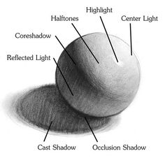 learn to draw to shadows and highlights