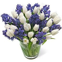 Hyacinth with white Tulips