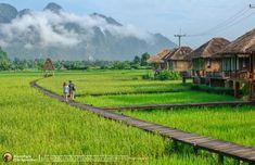 รีวิว : เวียงธาราวิลลา วังเวียง สปป.ลาว | README.ME Modern Tropical House, Tropical Houses, Bamboo House Design, Tree House Plans, Dreams Resorts, Thai House, Farm Stay, Resort Villa, Seen