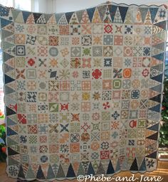 Dear Jane quilt picture of all blues in border triangles......like how it unifies
