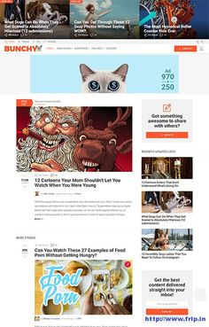 Do want to create a viral WordPress website similar to boredpanda.com and ebaumsworld.com. Then use this theme. Bunchy Viral WordPress Theme With Open Lists http://www.frip.in/bunchy-viral-wordpress-theme/