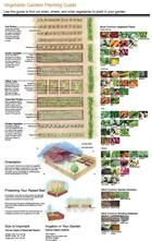 Garden Planting Guide: Use this illustration to find out when, where, and what vegetables to plant in your garden