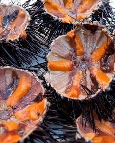 Sea urchin or ricci di mare, Puglia Greek Recipes, Italian Recipes, Sushi, Greek Sea, Crete Island, Greek Cooking, Yummy Drinks, Pot Roast, Food Porn