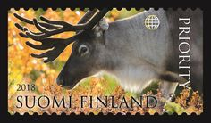 Postimerkki Banknote, Finland, Stamps, Coins, Paper, Animaux, Seals, Rooms, Postage Stamps