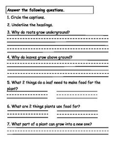 Plants Reading Comprehension