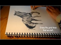 How to Draw a Realistic Horse - Speed Drawing Tutorial