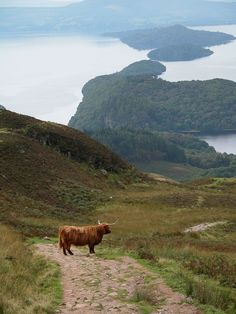 A great view from Conic Hill, Balmaha, Scotland.  Conic Hill is a sharp little summit rising above Balmaha.  Right on the Highland Boundary Fault, this short hillwalk offers truly fantastic views over Loch Lomond and its many islands.