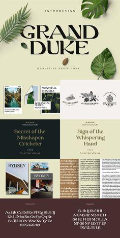 Modern Serif Fonts, Font Packs, Wedding Fonts, Photoshop Illustrator, Typography Design, Type Design, Typographic Design