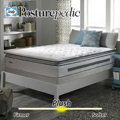 Costo Barnhard Plush Euro Pillowtop Queen Mattress Set Single Piece Box Spring Included