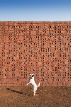 This burnt-orange wall of handmade bricks is an installation by artist Willem Boshoff, called Word Woes, that features nearly 300 carved words that can be read in either English or Afrikaans, but has different meanings in the two languages.
