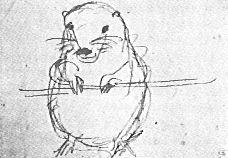 Pre Raphaelite Art: Wombat Sketch by William Michael Rossetti Gabriel Rossetti, John Everett Millais, Pre Raphaelite, Wombat, Poetry Books, Illustration Art, Sketch, Friday, Paintings
