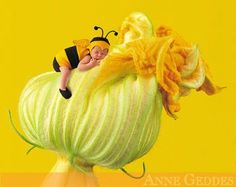 Browse through images in Anne Geddes' Classic Images collection. A selection of classic Anne Geddes images. Anne Geddes, Cute Baby Pictures, Baby Photos, Newborn Photos, Christening Photography, Baby Bumble Bee, Pumpkin Flower, Baby Christening, Kendo