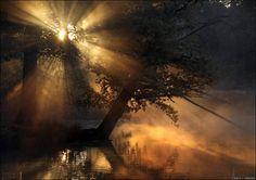 Softly sings the bayou, let me whisper tender nothings