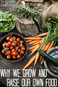 Why we grow and raise our own food. America is failing. | The Easy Homestead (.com)