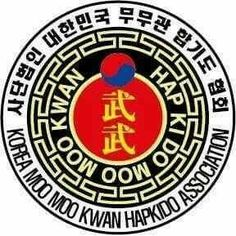 Sudbury Hapkido Club - Martial Arts Club in Sudbury (UK) Martial Arts Club, Korean Martial Arts, Hapkido, Patches, Cool Stuff, Weapons Guns, Martial Arts, Aikido