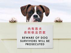 Funny Sign - Chinglish Translation - Survivors will be Prosecuted. $17.50, via Etsy.
