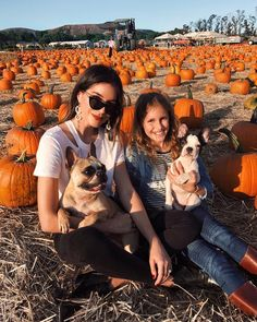 Girls chilling in a pumpkin plantation! #seasons #fall #outono #autumn #fallseason #leaves #coloursofautumn @thriftsandthreads
