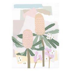 ART PRINT | coastal banksia by leah bartholomew | Cranmore Home