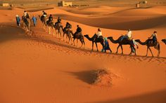 Take #MoroccoPrivateTours and let yourself get lost in an ancient souk or sample new foods with a friendly local guide by your side. Know more @ http://www.camelsafaries.net/traveltip.html