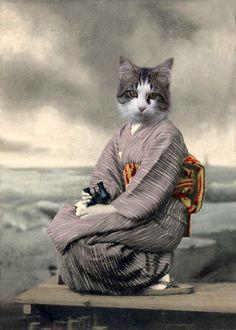 Neko Chan - Vintage Cat Altered Photograph - Anthropomorphic