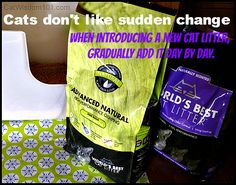 From our Catvocate: Cat Wisdom 101 http://catwisdom101.com/worlds-cat-litter-advanced-natural-series-reviewgiveaway/