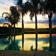 #CasaDiMelo #gorgeous #sunset #water #nature #travel #ecotourism #vacation #viajar #fotografía #instapassport #Italy #Sicily #siracusa #syracuse #pretty #orange #yellow #pink #blue #green  www.fleetinglife.com