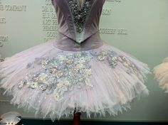 The Lilac Fairy in Canada's Royal Winnipeg Ballet's production of The Sleeping Beauty #RWBallet #tutu