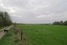 2014-10-26 Landschap teruglopend vanaf het Ganzenei