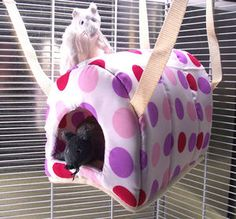 Ferret Rat Degu Igloo Hanging Hammock Bed Cage Toy - Various Designs