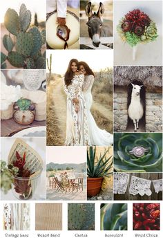 Desert Dried Chile Cactus Inspiration Board