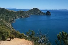 Beginning with an optional 2 hour scenic cruise from Auckland, the Coromandel Ultimate Walks package gives you the chance to discover the diversity and unique character of the real Coromandel. Sky Adventure, Auckland, Walkway, The Locals, Remote, Coastal, Cruise, Tours, Earth