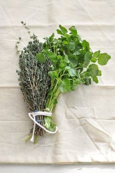 Thyme and Watercress