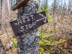 Bean and Bear Lakes Superior Hiking Trail North Country Trail, Trail Signs, Twin Lakes, Lake Superior, Hiking Trails, Bear, Bears
